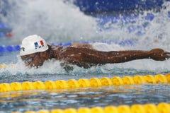 Mehdy metella Coupe Du Monde Pływanie àChartres Zdjęcie Stock