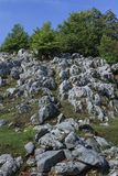 Mehedinti山,罗马尼亚 免版税库存图片