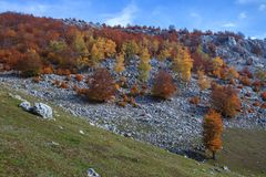 The Mehedinti Mountains Stock Image