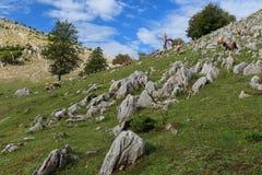 The Mehedinti Mountains Stock Photos