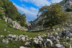 The Mehedinti Mountains Royalty Free Stock Photo