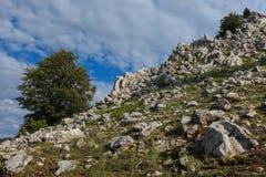 The Mehedinti Mountains Royalty Free Stock Image