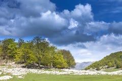 Mehedinti Mountains. Spring in Mehedinti Mountains, in Romania Royalty Free Stock Photography