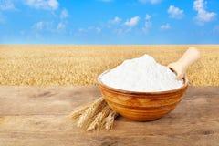 Mehl in der Schüssel auf Weizenfeldhintergrund Lizenzfreie Stockbilder