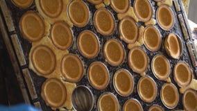 Mehlbonbon-Nusslebern mit Kondensmilch, Süßigkeitenproduktion backen und herstellend, traditionell stock video