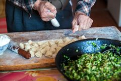 Mehlklöße des traditionellen Chinesen Kochen von selbst gemachten Mehlklößen mit Fleisch und Grüns stockfotos