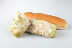Mehltau auf Brot Verdorbene Nahrungsmittel, die zum Verbrauch schädlich sind lizenzfreie stockfotografie