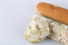 Mehltau auf Brot Verdorbene Nahrungsmittel, die zum Verbrauch schädlich sind stockfotografie