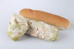 Mehltau auf Brot Verdorbene Nahrungsmittel, die zum Verbrauch schädlich sind lizenzfreies stockbild