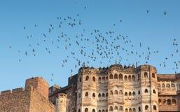 Mehrangarh fort i Jodhpur Arkivbilder