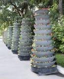 Mehrere der hoch gelegenen Blumenbeete Lizenzfreie Stockfotos