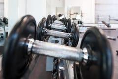 Mehrfache Eisendummköpfe im Sportzentrum lizenzfreie stockfotografie