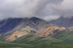 Mehrfache Farben in den Hügeln von Denali, Alaska. Stockfotografie