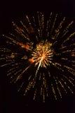 Mehrfache goldene Feuerwerke Stockfotos