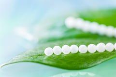 Mehrfache homöopathische Pillen auf grünen Blättern stockfotos