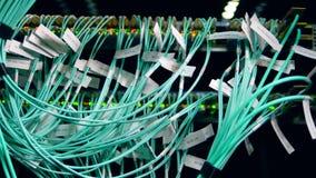 Mehrfache nummerierte Drähte verstopft in Server stock video