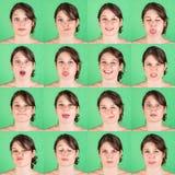 Mehrfaches Porträt lizenzfreies stockbild