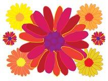 Mehrfarbenblumen vektor abbildung