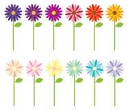 Mehrfarbige Blumen stock abbildung