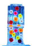 Mehrfarbige Blumen eingefroren in den Eiskasten transparent Lizenzfreie Stockfotos