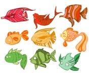 Mehrfarbige charismatische Fische Stockfotografie