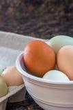Mehrfarbige Eier auf einem Zähler Stockbild