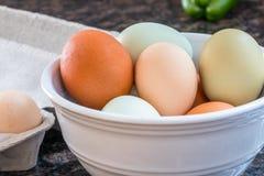 Mehrfarbige Eier in einer Schüssel Lizenzfreie Stockfotos