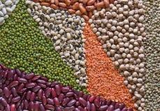 Mehrfarbige Hülsenfrüchte Stockbilder
