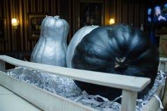 Mehrfarbige Kürbise für Halloween in einem Kasten Stockfotos