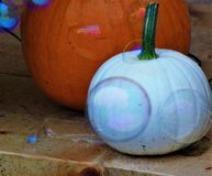Mehrfarbige Kürbise mit den Blasen, die vorbei schwimmen lizenzfreies stockbild