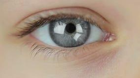 Mehrfarbige Kontaktlinsen. Nahtlose Schleife stock video