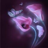 Mehrfarbige Lilien und der Schmetterling Stockfoto