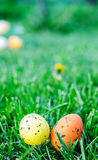Mehrfarbige Ostereier auf grünem Gras Lizenzfreies Stockbild