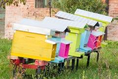 Mehrfarbige Reihe hölzerne Bienenstöcke lizenzfreies stockbild