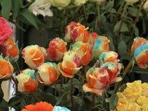 Mehrfarbige Rosen Stockfotos