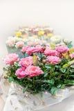 Mehrfarbige Rosen im Speicher werden als Geschenk in einem Paket verkauft Der Landwirt ` s Markt Stockfotografie