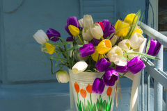 Mehrfarbige Tulpen auf unscharfem Hintergrund Lizenzfreies Stockbild