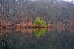 Mehrfarbiger Baum reflektiert im See Lizenzfreie Stockbilder