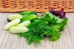 Mehrfarbiger Blattkopfsalat, Gurken, Dill auf einer Weidenserviette vorbereitet für das Schneiden des Salats lizenzfreie stockfotografie
