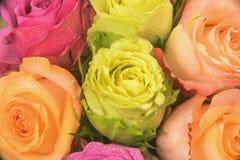 Mehrfarbiger Blumenstrauß Rose Lizenzfreie Stockbilder