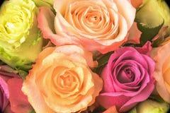 Mehrfarbiger Blumenstrauß Rose Stockfoto