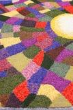 Mehrfarbiger Blumenteppich Stockbild