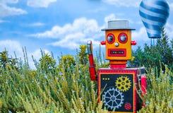 Mehrfarbiger heller hölzerner Spielzeugroboter auf grünem Blumenhintergrund mit blauem Ballon und Himmel hinten stockfotografie
