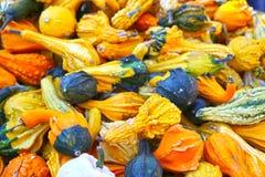 Mehrfarbiger Kürbisherbst-Erntehintergrund stockfotos