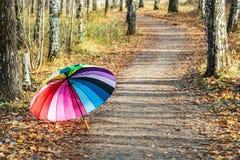 Mehrfarbiger Regenschirm steht auf Fallblättern still stockfoto