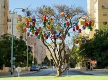Mehrfarbiger Vogelhausfall auf einem Baum Stockbilder
