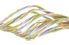 Mehrfarbiges Computernetzwerkkabel Lizenzfreie Stockfotos