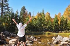 Mehrfarbiges Herbstholz Stockfotografie