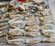 Mehrlagenplatte der Austern Stockfotos