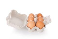 A meia dúzia galinha marrom eggs na caixa isolada no branco Fotografia de Stock Royalty Free